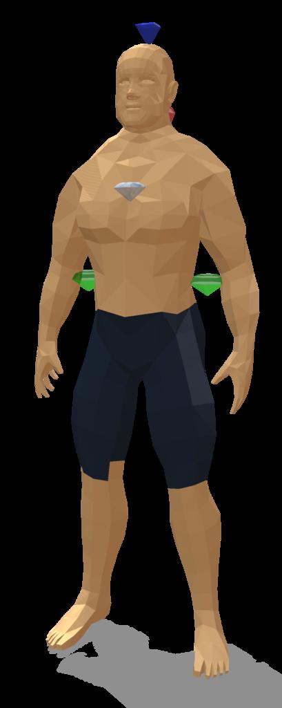Body model